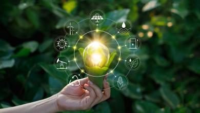 Digital Technologies Save Environment